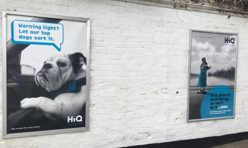 HiQ Shrewsbury external posters- Let our top dogs sort it