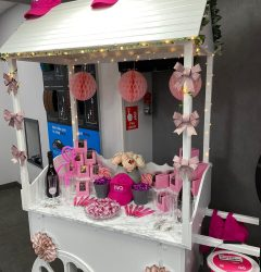 Project Pink Display 2