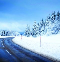 Sava stock file_winter