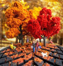 Autumn FINAL