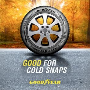 Goodyear good for cold snaps